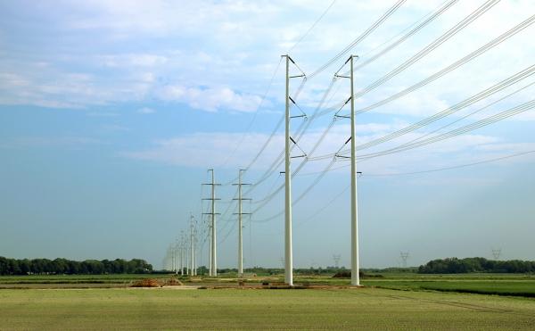 Utility poles Netherlands